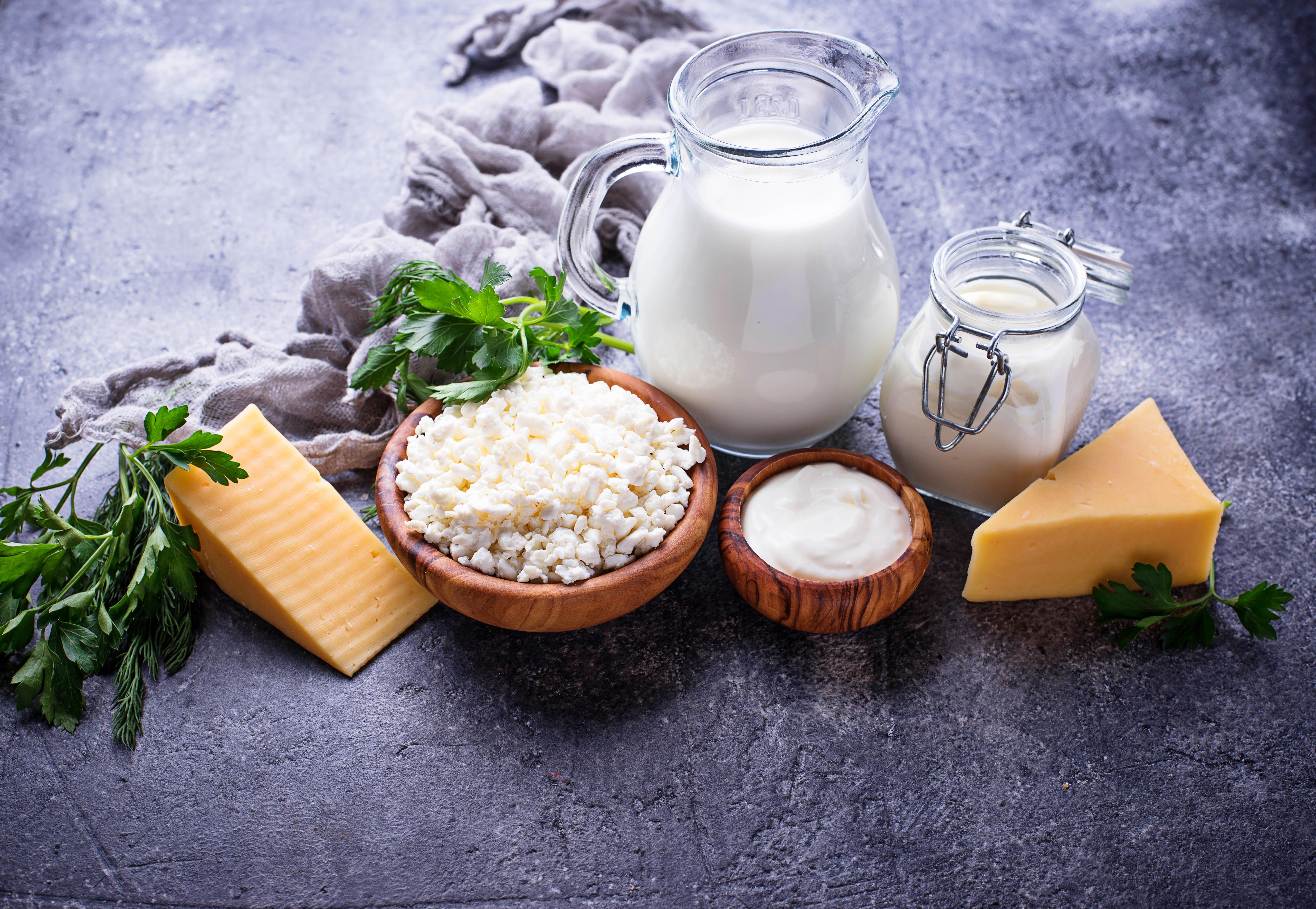 Der Internationale Tag der Milch auf neuen Wegen